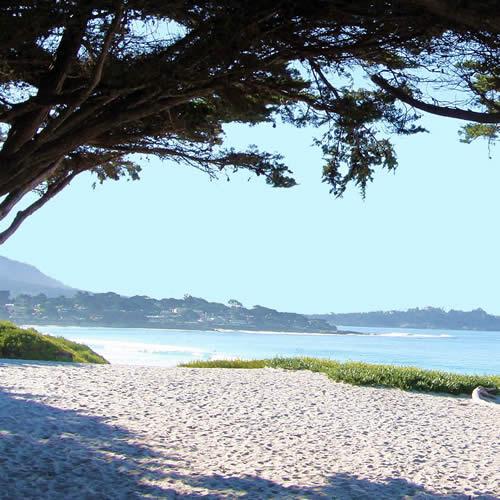 carmel beach with ocean view