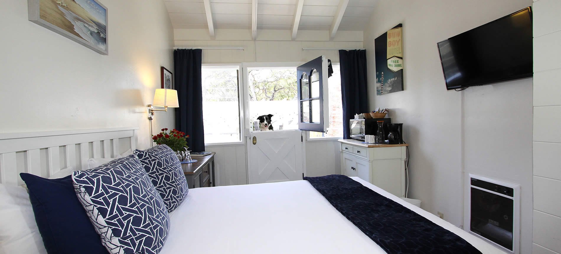 pet friendly carmel hotel - guest room with bed, TV and dog at door
